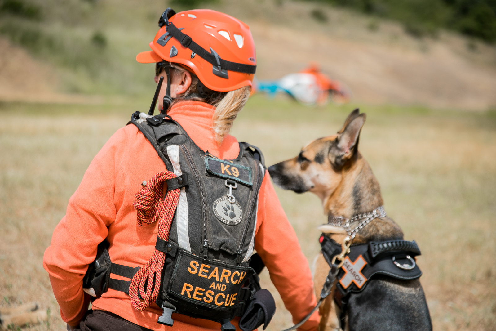 search-and-rescue-carda-dog SAR HELO
